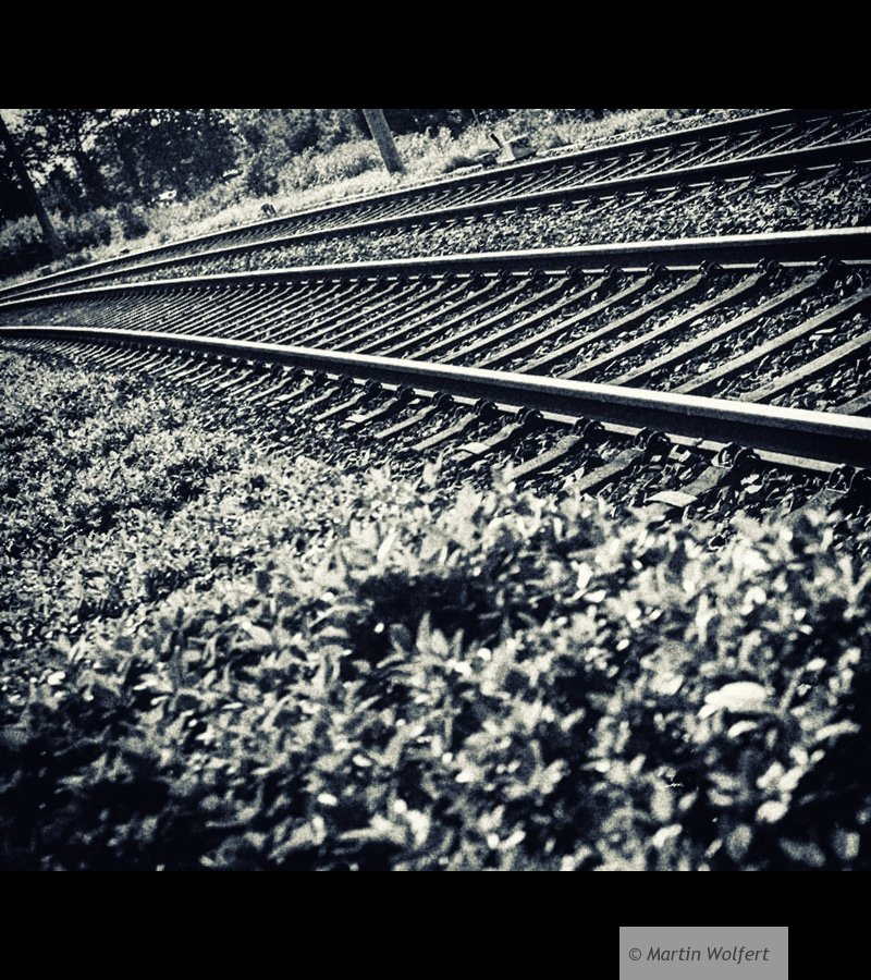 Railways #14