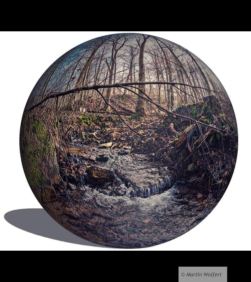 Ettlingen forest ball #186