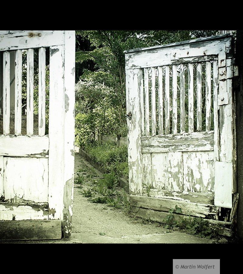 Tag #215 |Old wooden door