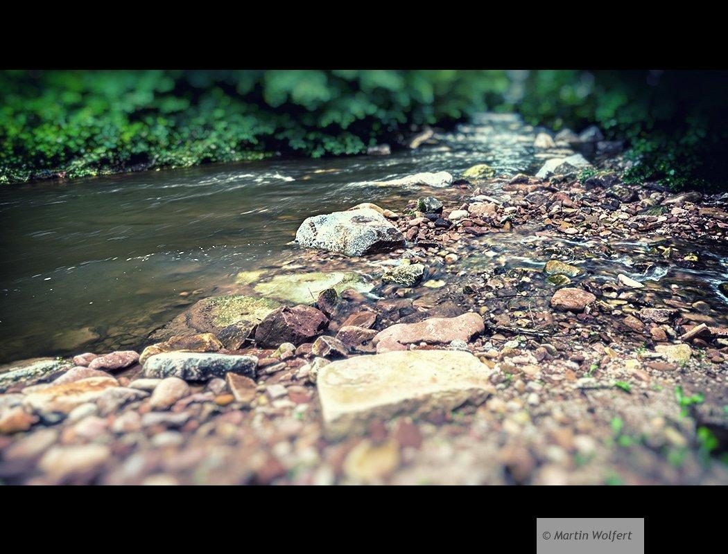 Wet rocks #318