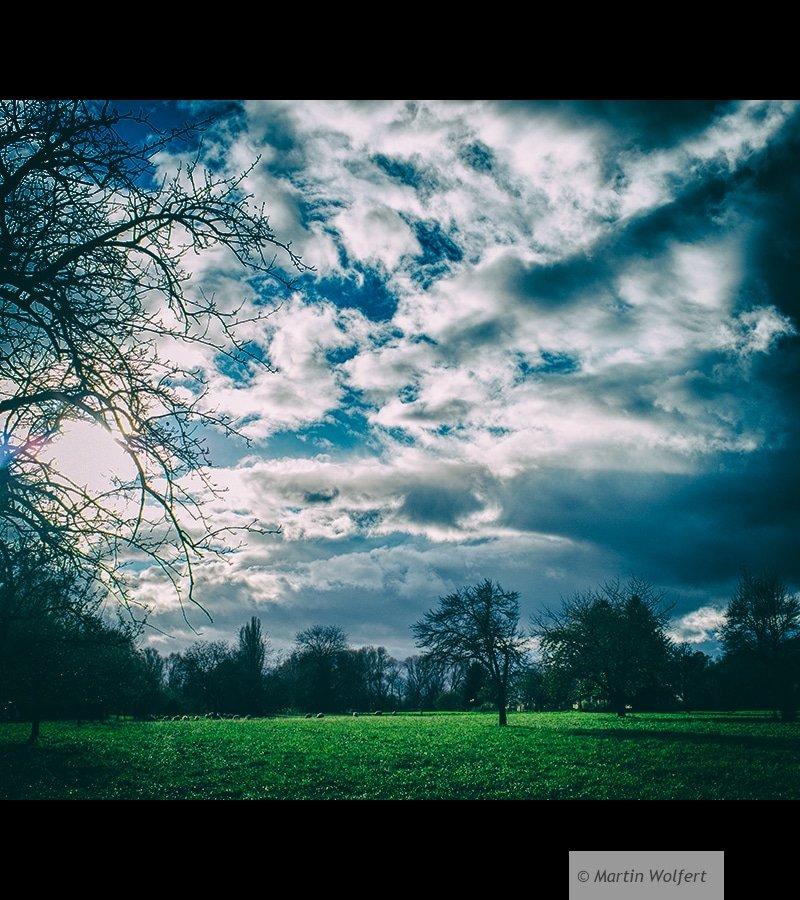 Tag #50    Autumn sky
