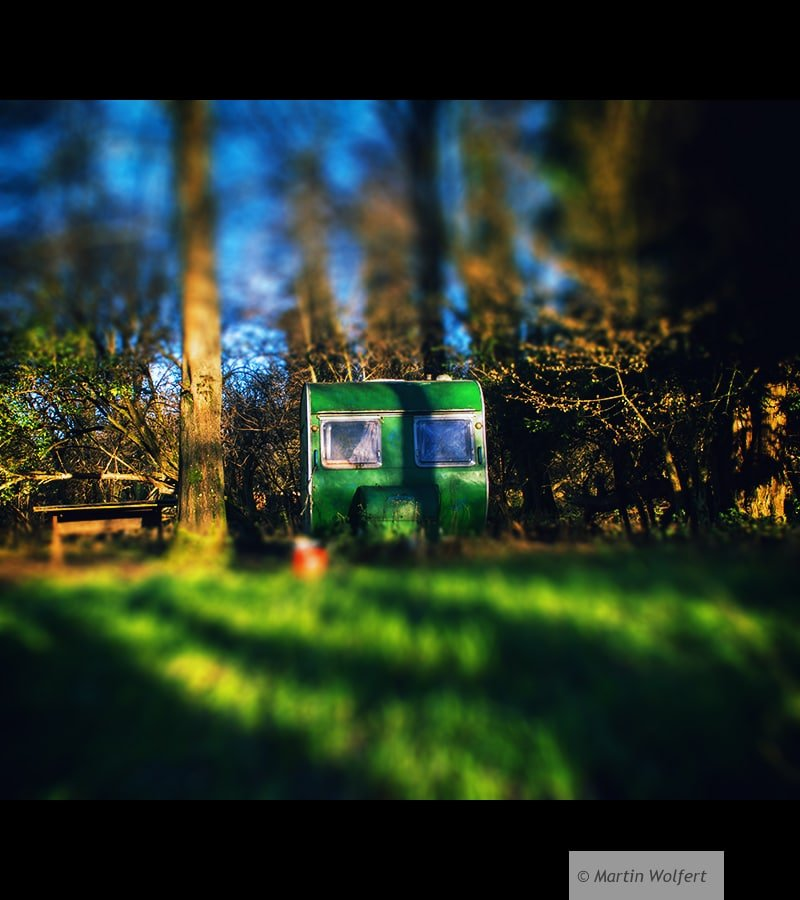 Green in the woods #94